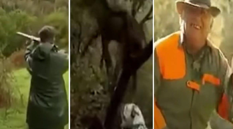 El desternillante vídeo que nunca nos cansamos de ver: el venado y los cuñados