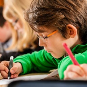 El Gobierno lleva el adoctrinamiento animalista a las aulas con la nueva Ley Orgánica de Educación