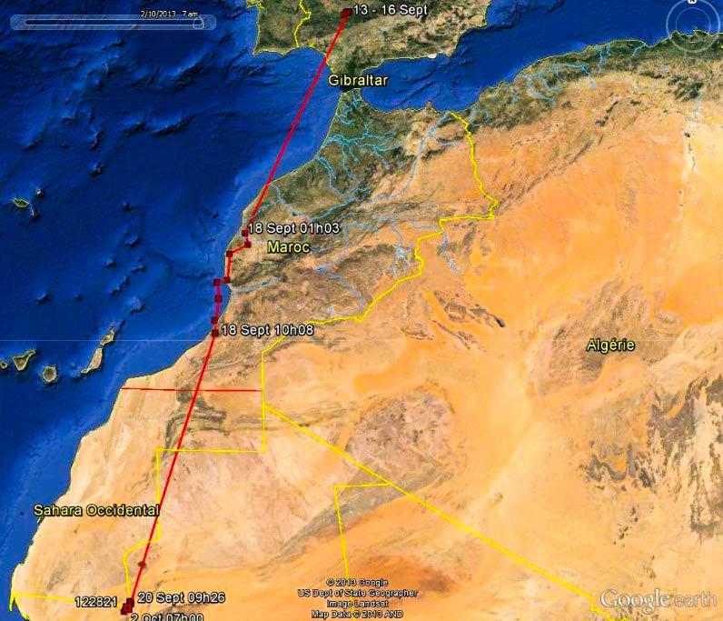 Mapa de la ruta migratoria de Marcel entre el 16 septiembre y el 2 octubre de 2013.