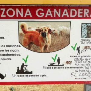 Así 'respetan' los defensores del lobo al mundo rural: destrozando los carteles de sus ganaderos