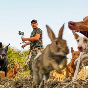Trailer de la jornada en la que se grabó uno de los mejores vídeos de caza de conejo de la historia