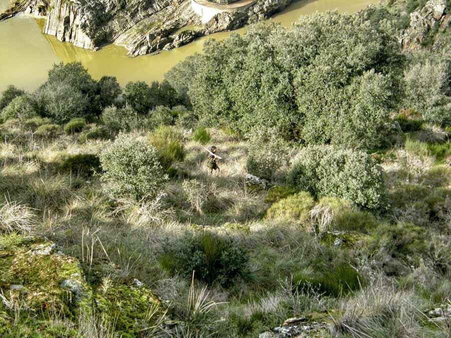 Cazando en las Arribes del Duero. © Dámaso Jorreto