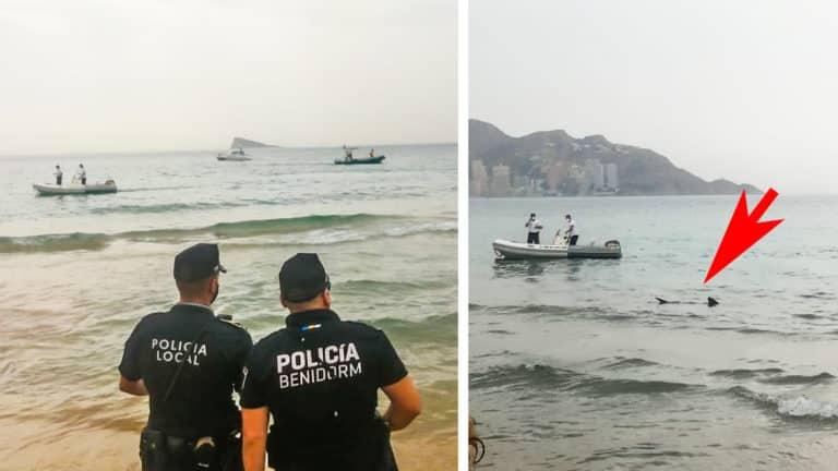 Imagen de los agentes de policía mirando el tiburón. © Jara y Sedal