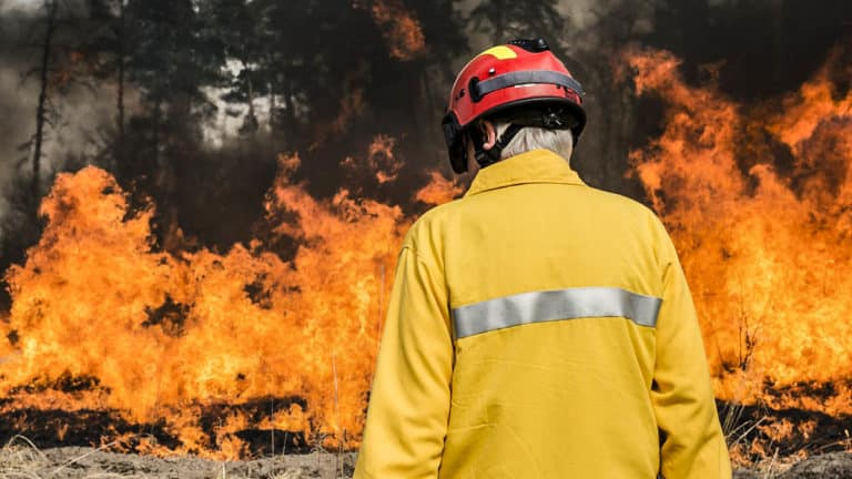 carta bombero