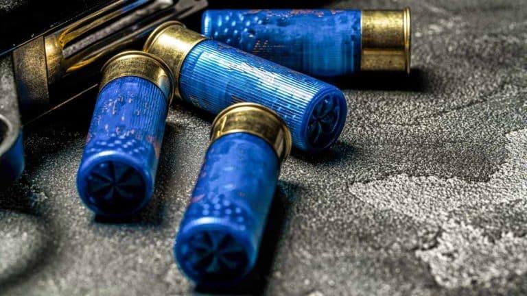 Cartuchos de plomo junto a una escopeta. © Shutterstock