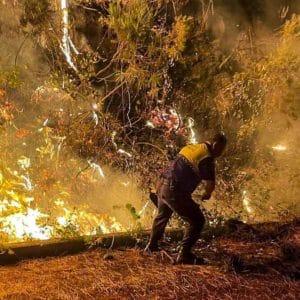 Muere un bombero en el incendio que ha arrasado ya más de 3.600 hectáreas en Málaga