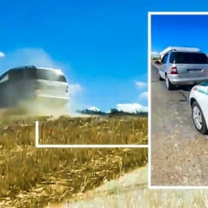 El Seprona detiene a dos furtivos que corrían liebres con su coche tras una persecución de película