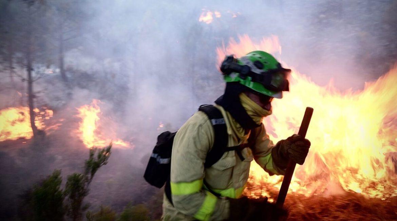 Los cazadores ya trabajan para recuperar Sierra Bermeja tras el incendio