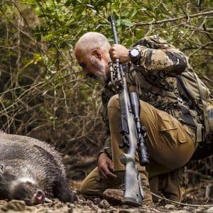 Espectacular corto en el que Rafa Carrillo caza un gran jabalí en el Alto Tajo