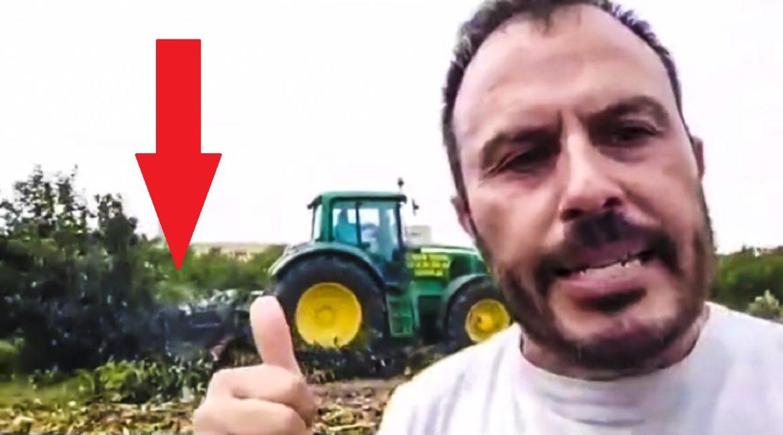Un agricultor denuncia en un vídeo cómo trituran un campo de caquis