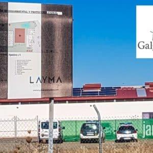 La Guardia Civil toma la sede de Galgos del Sur, la protectora animalista anticaza