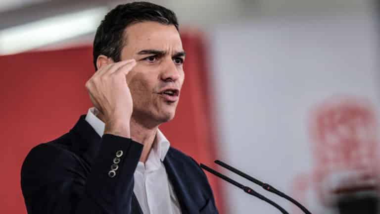 Pedro Sánchez, presidente del Gobierno. © zixia / Shutterstock.com