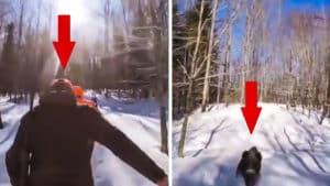 Un cazador cae a merced de un jabalí que lo ataca en el suelo