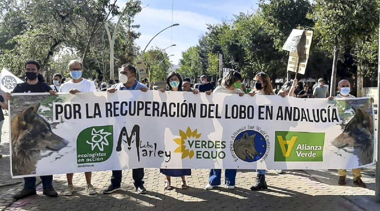 Estrepitoso fracaso de la manifestación para reintroducir lobos en Andalucía