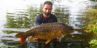 razones por la que pescar en río