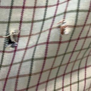 Un cazador recibe un balazo que sólo le agujerea la camisa