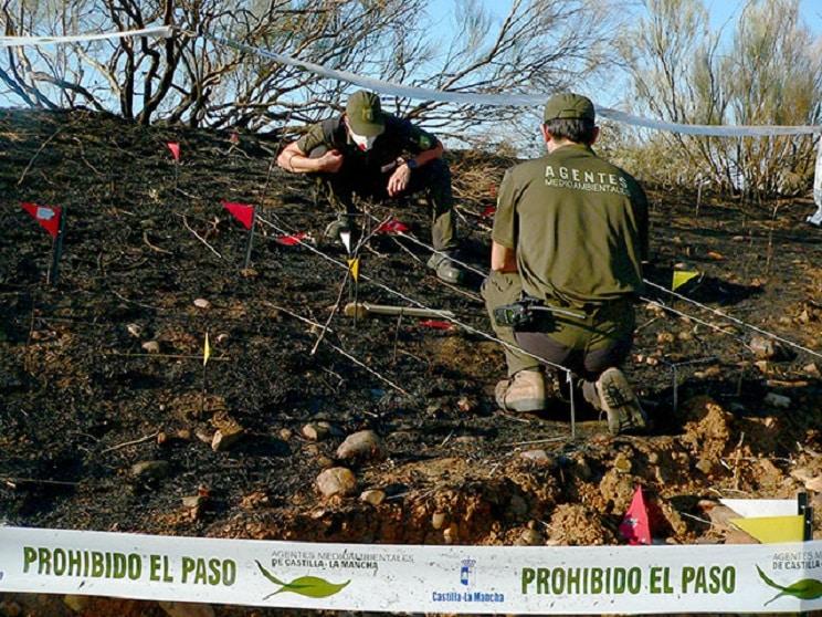 Los Agentes Medioambientales de CLM denuncian la privatización del seguimiento de fauna protegida
