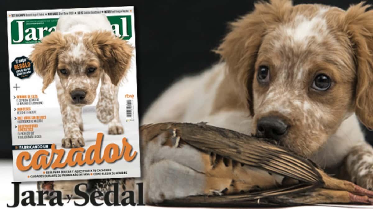 La revista Jara y Sedal podrá descargarse gratis durante el aislamiento por el coronavirus