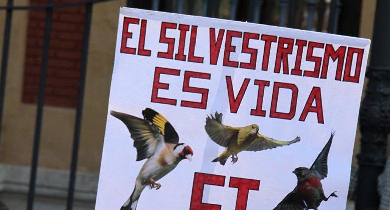"""El programa """"El Público"""" de Canal Sur criminaliza a los 14.000 silvestristas andaluces"""