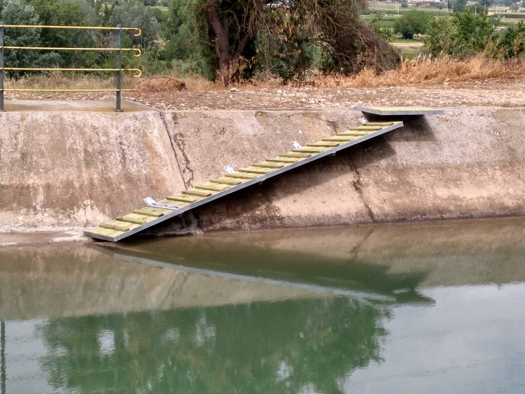 Cazadores colocan rampas en un canal para evitar que los animales mueran ahogados