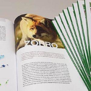 El IREC presenta este jueves en Ciudad Real el libro 'Las especies cinegéticas españolas en el siglo XXI'