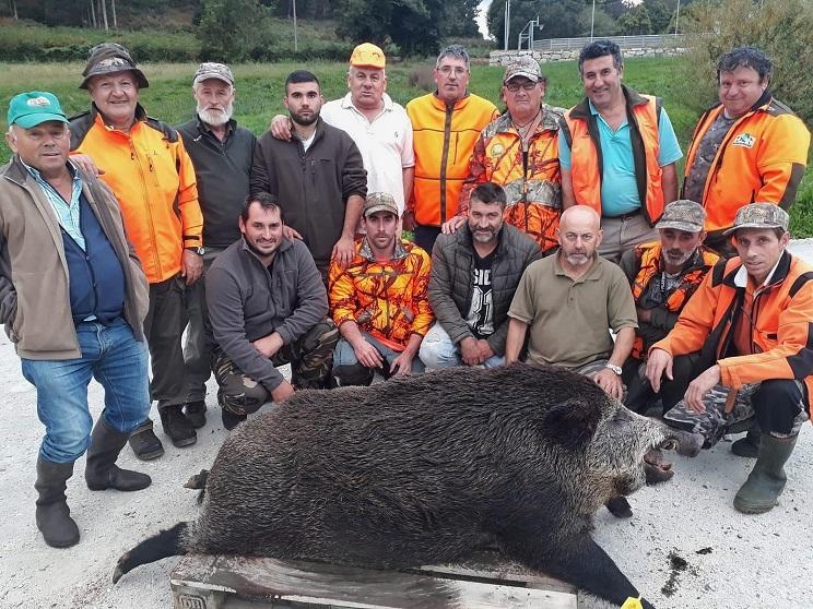 Cazan un descomunal jabalí de casi 200 kilos en Galicia: el mayor que se recuerda