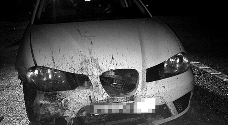 Cuatro jabalíes se cuelan en una autopista y causan este aparatoso accidente