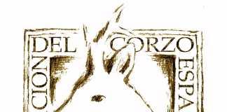 ace-asociacion-del-corzo-espanol