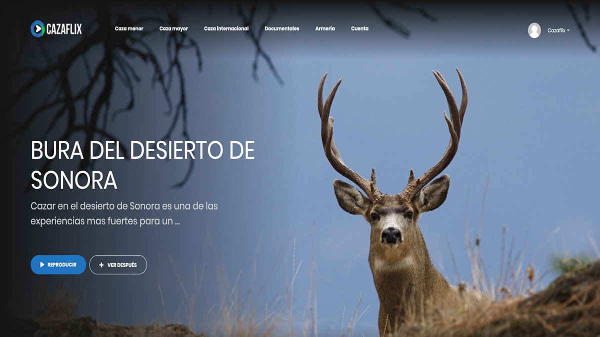 Hoy, gratis en Cazaflix, Bura del desierto de Sonora