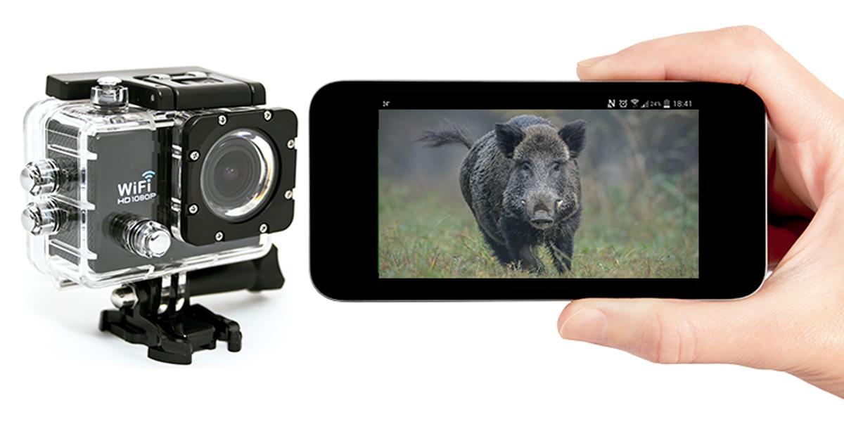 I Certamen de vídeos de caza y naturaleza Jara y Sedal – Peltor 3M