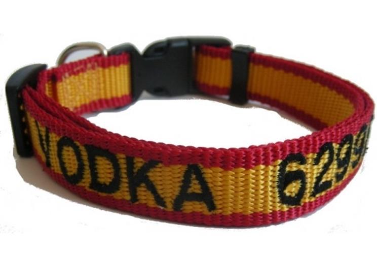 Collar identificador para perros / Fotografía: paranuestroperro.es