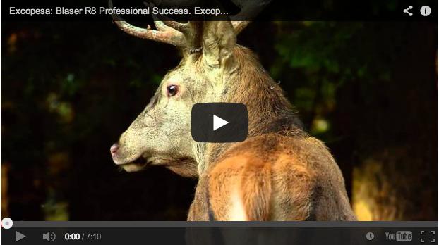 Uno de los mejores vídeos de caza jamás rodados – Blaser R8