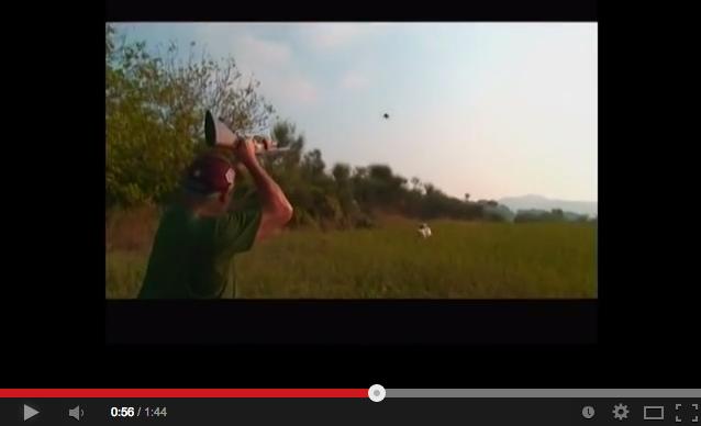 Tirador profesional cazando. Renato Lamera.