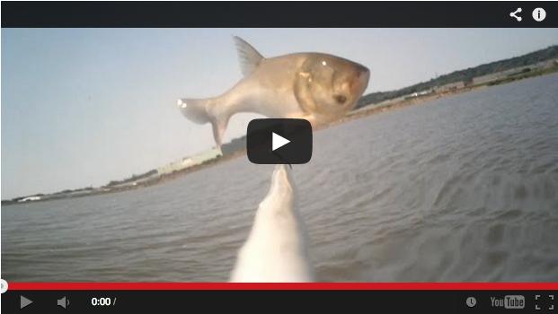 Pesca con arco y flecha