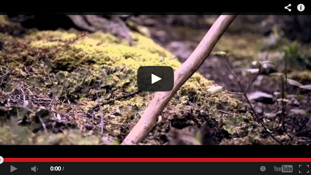 Otro extraordinario vídeo de caza de Blaser