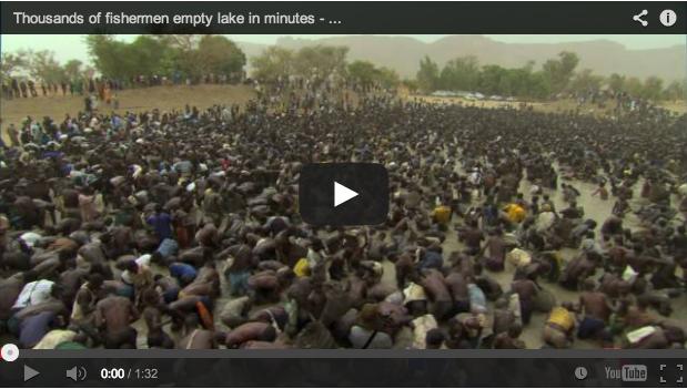 Miles de pescadores vacían un lago en pocos minutos