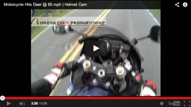 Motorista atropella a un ciervo a 135 km/h ¡y sale ileso!