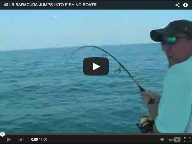 Pesca en mar: Una barracuda pica y salta al barco