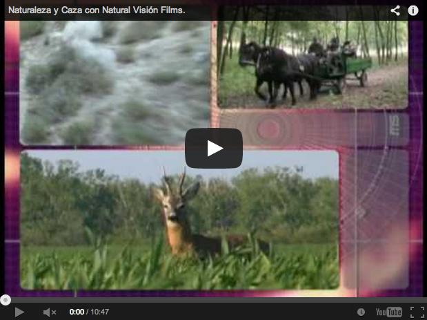 Emocionantes lances de caza mayor y menor. Natural Visión Films.