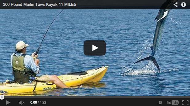 Pescando Marlin de 130 kilos desde un kayak