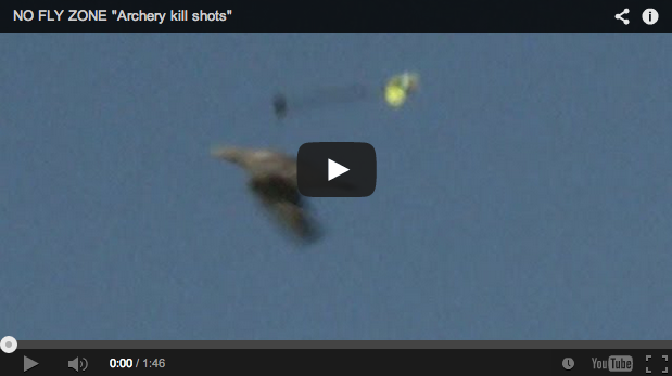 Caza de palomas al vuelo con arco. Increíbles disparos