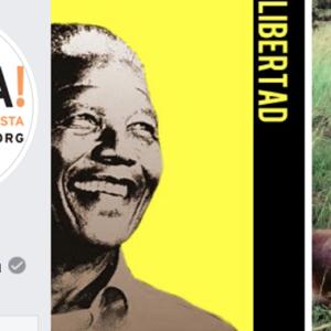 Libera elimina de su portada de Facebook la foto de Nelson Mandela (cazador)