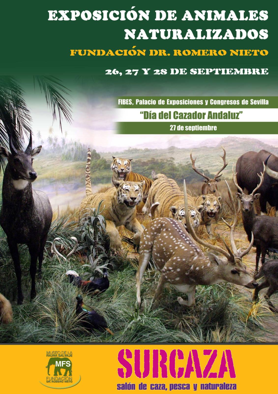 Surcaza contará con una excepcional exposición de la colección del Dr. Romero Nieto