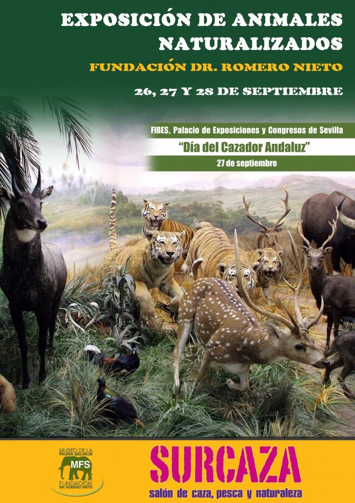 Cartel Exposición animales
