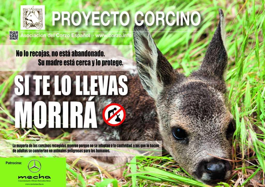 Cartel Proyecto Corcino 2015_Medios