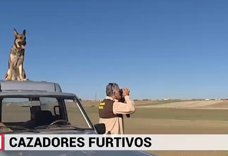 Guarda Rural vigilando su coto / Fotografía: Telemandrid