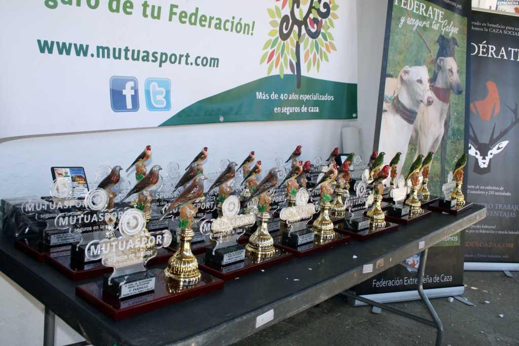 Copa Mutuasport Silvestrismo 2015-02