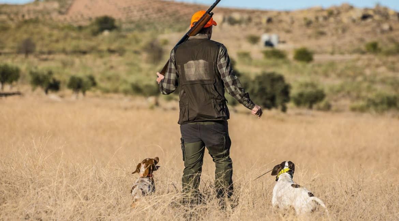 Los cazadores andaluces podrán seguir desplazándose entre provincias para cazar