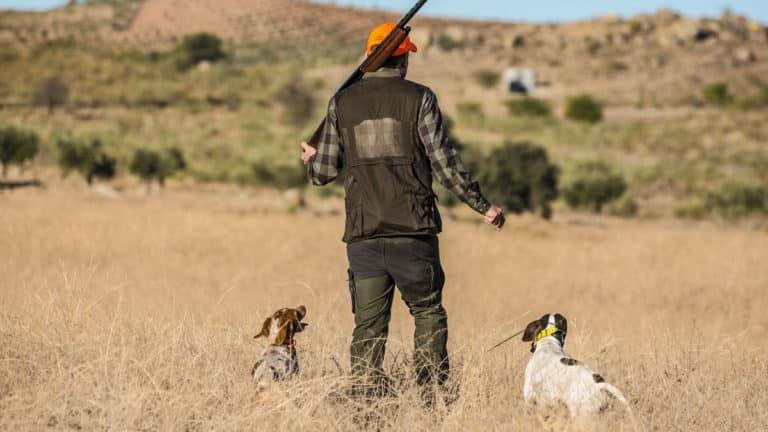 movilidad cazadores por comunidades autónomas