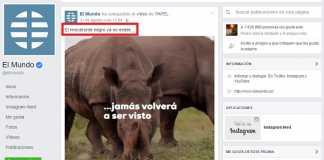 El rinoceronte negro ya no existe, asegura el diario El Mundo